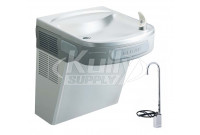 Elkay EZSDSF Stainless Steel NON-REFRIGERATED Drinking Fountain with Glass Filler