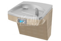 Oasis PG8ACT Sensor-Operated Drinking Fountain