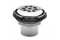 Haws 6462 Vandal-Resistant Waste Strainer Assembly