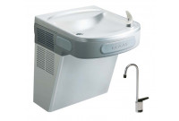 Elkay EZS8SF Stainless Steel Drinking Fountain with Glass Filler