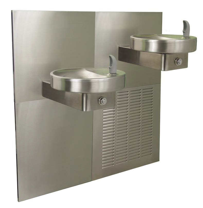 Oasis M8CR In-Wall Dual Drinking Fountain